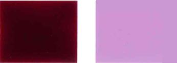 Pigment-násilný-19-Color